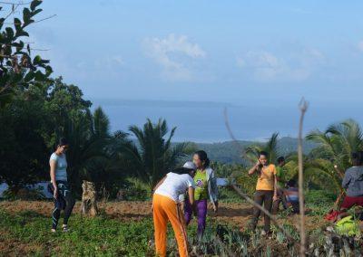 Tree Planting 2018